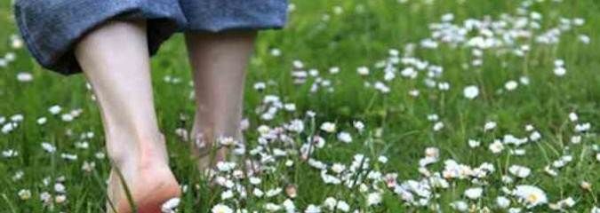 Grounding for Body Equilibrium and Health