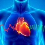 Creating Heart-to-Heart Coherence and Living a Heart-Centered Life
