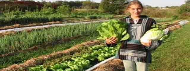 Organic Agriculture Attracts a New Generation of Farmers
