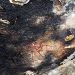 10,000-Year-Old Rock Paintings Depicting Aliens and UFOs Found In Chhattisgarh, India