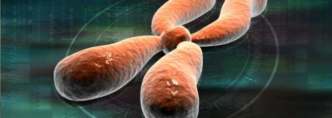 On/Off Switch For Aging Cells Discovered By Scientists