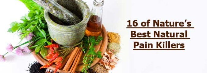 16 of Nature's Best Natural Pain Killers