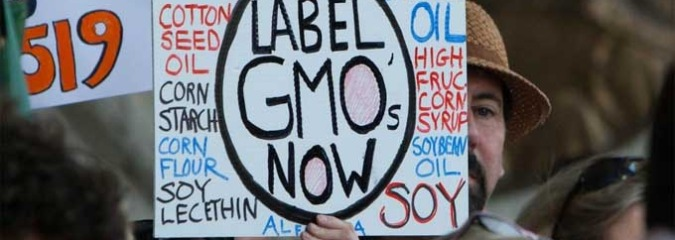 Gwyneth Paltrow Campaigns for GMO Labeling at U.S. Capitol