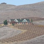 California Drought Worst in 1,200 Years: Study