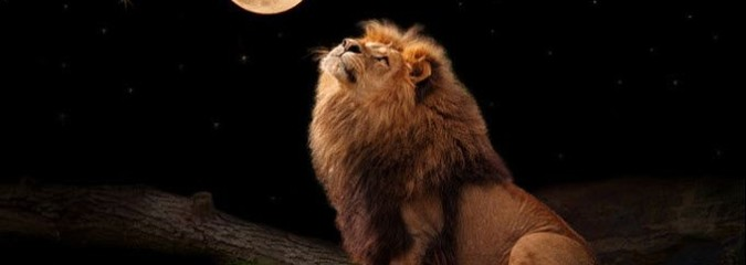 Leo Full Moon Invites You to Laugh, Celebrate, and Focus on the Light