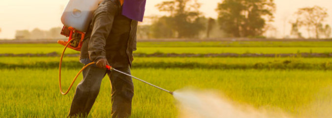 Scientist Defends WHO Group Report Linking Herbicide to Cancer