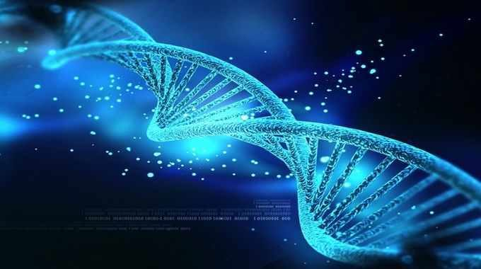 DNA Code Can Now Be Modified. Are We One Step Closer to Creating GMO Humans?
