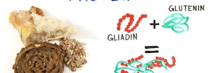 What the Heck Is Gluten? And Do You Need to Avoid It?