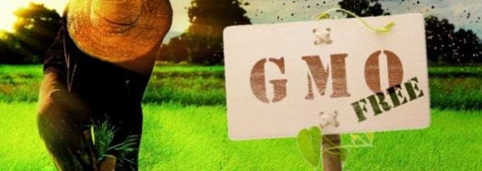 """New Analysis: """"GE Crops Have Done NOTHING To Improve Global Food Security""""; Here's How to Increase Production & Reduce Waste Without GMOs"""