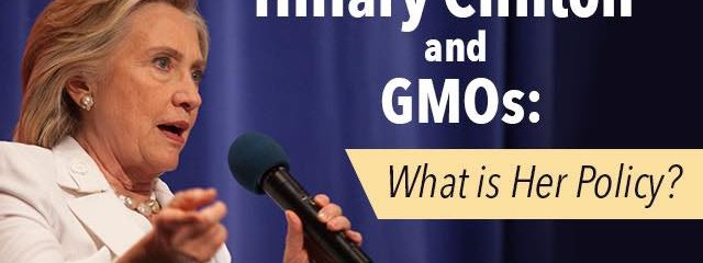 GMOs and Hillary Clinton : What Is Her Policy?
