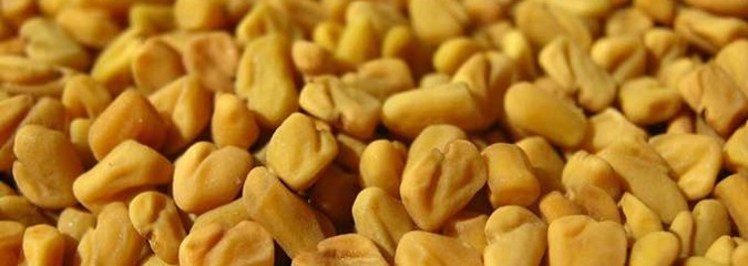 Eat Fabulous Fenugreek for These 8 Great Health Benefits