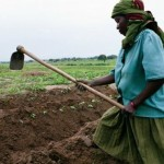 World's Small Farmers Fighting Back as World Trade Organization Pushes Corporate Agenda