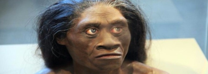 Mysterious 'Hobbits' That Perished 15,000 Years Ago Were Not Human (Study)