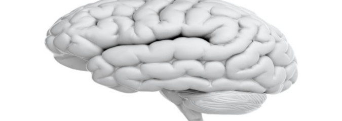 Five Things That Poison Your Brain