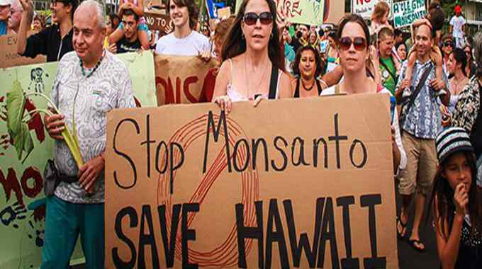 Monsanto Protests in Hawaii