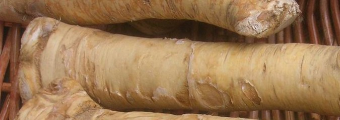 Here's How Horseradish Root Helps Prevent Respiratory Illness, UTIs & Cancer