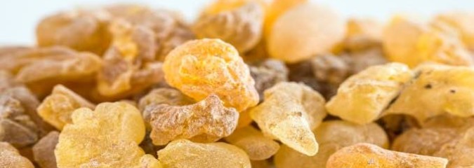 The Medicinal and Spiritual Benefits of Frankincense