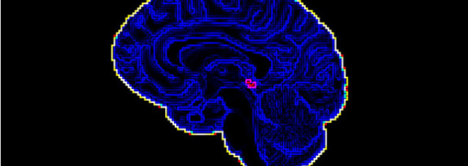 Mysteries of the Pineal Gland Ignored by Mainstream Science and Research