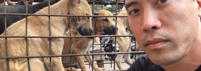This Man Just Saved 1,000 Dogs From Being Slaughtered At The Yulin Dog Meat Festival