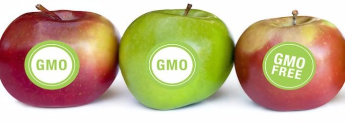 GMO Labeling Law: Did Your Senators Vote to Keep You in the Dark?