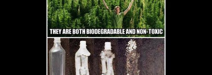 A Single Meme's Message on Hemp Plastic Was So Powerful, It Sparked an Internet Revolution