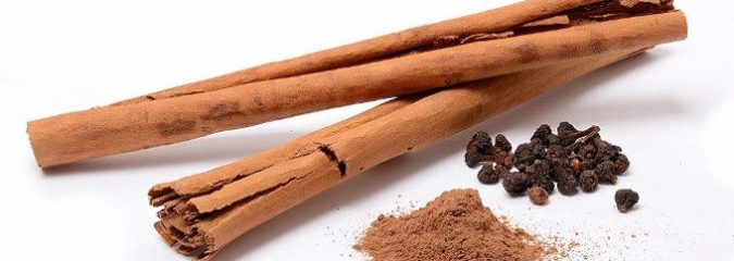 Make Sure to Get the RIGHT Kind of Cinnamon That Improves Memory, Learning, and Reverses Parkinson's