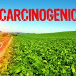 EU's Smallest Nation Takes The Biggest Step on Banning Monsanto's Toxic Glyphosate