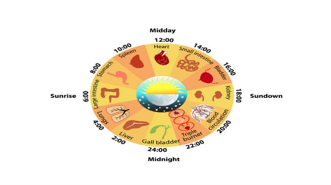Why Am I Waking Up the Same Time Every Night? Traditional Chinese Medicine May Have the Answer