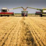 Why Industrial Farming Is Costing You Your Health and Where to Find Healthy Food