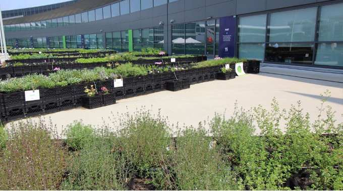 Airline Brings Fresher Food to the Skies and a Garden to JFK Airport