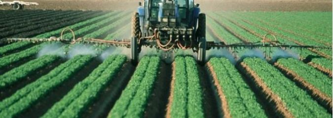 Monsanto Tribunal & People's Assemblies: Ending a Century of Ecocide and Genocide