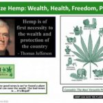 Hemp Can Make America Great Again!
