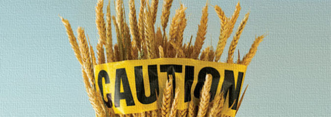 MIT Scientist Explains Why Modern Wheat is Causing So Many Health Problems