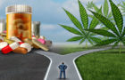 Dr. Mercola: Medical Cannabis Is a Vastly Underutilized Therapeutic Option