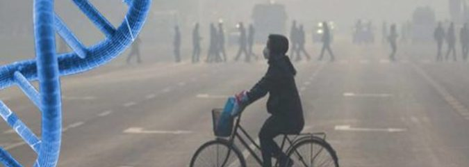 Genes for Antibiotic-Resistant Bacteria Are Found in Beijing Smog