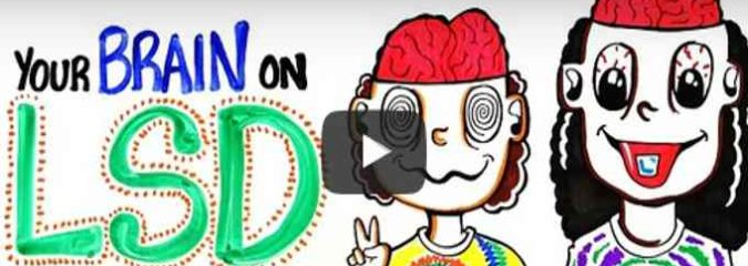 How LSD And Acid Affects Your Brain (Video)