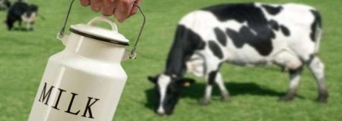 Big Dairy Continues War Against Farmers & Raw Milk
