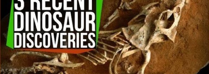 3 Mind-Blowing Recent Dinosaur Discoveries