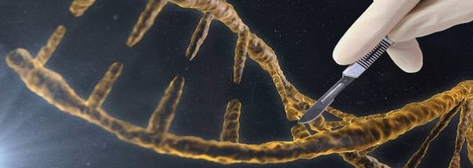 Here's How You & Your DNA are Being Targeted