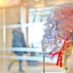 Neuroscientists Discover a Unique Link Between Breathing and The Brain