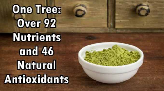 One Tree: Over 92 Nutrients and 46 Natural Antioxidants