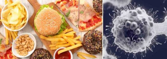 Ultra-Processed and Plastic-Contaminated Food Wreak Havoc on Health